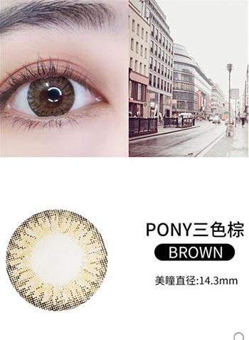PONY三色棕.jpg