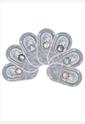 BESCON双色钻石紫色半年抛隐形眼镜1片装